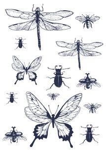 Tissu adhésif A4 Papillons Graine créative